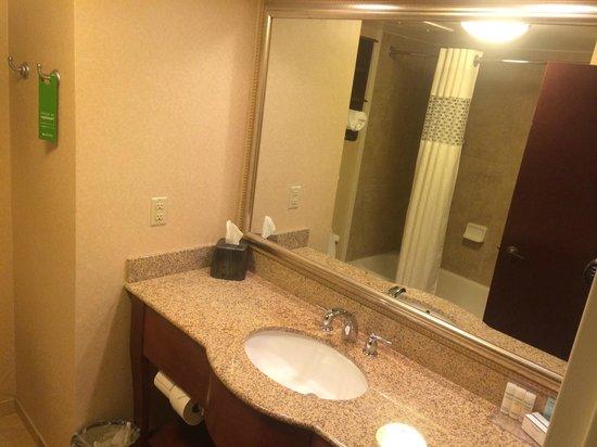 Hampton Inn Columbia Northeast-Fort Jackson Area; bathroom