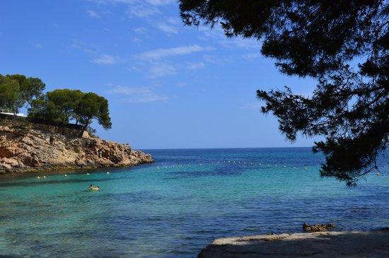 Hotel RD Mar de Portals : La petite crique / plage