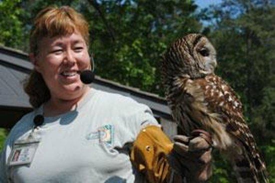 Newport News, VA: Summer LIVE Animal Show