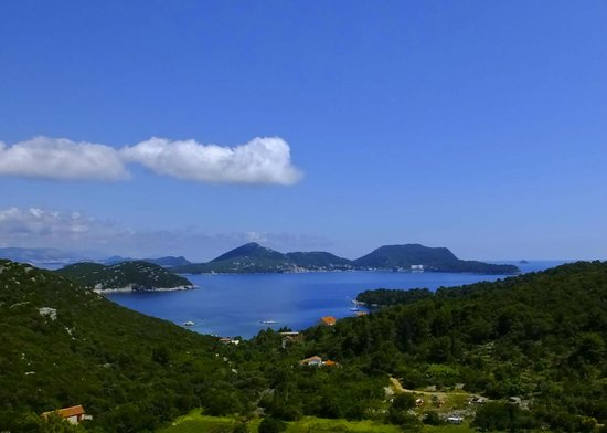 Hotel Bozica: Island view
