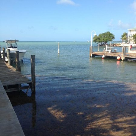 Seascape Motel and Marina: dock (which is included in rate)