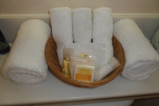 Days Inn Hollywood Near Universal Studios : this is a cute basket they put your shampoo in