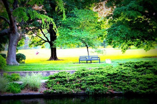 Loose Park : That Lonely Bench Wants You There