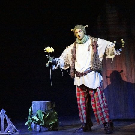 Rocky Mountain Repertory Theatre : Shrek The Musical 2014
