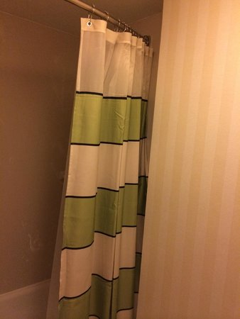 Fairfield Inn & Suites Albany East Greenbush: Shower