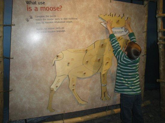 Denali Visitor Center: Denali NP Visitor Center Moose Puzzle