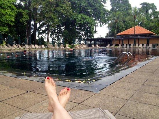 Sofitel Singapore Sentosa Resort & Spa: 2.5m swimming pool