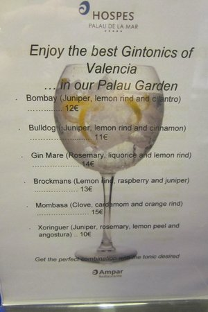 Hospes Palau de la Mar Hotel: Excellent Gin & Tonic Selection
