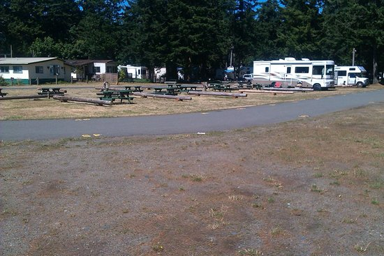 Salmon Point Resort RV Park & Marina: Salmon Point Camping.