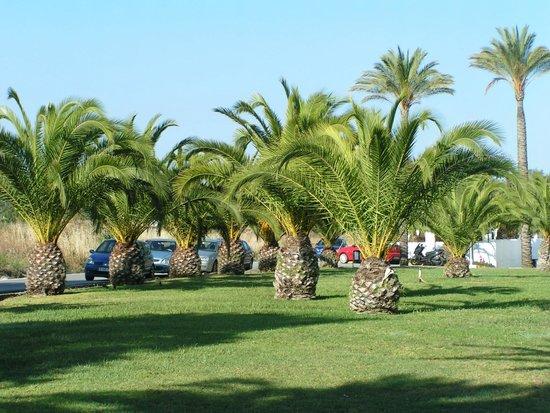 Club Marmara Marbella: devant de l'hotel