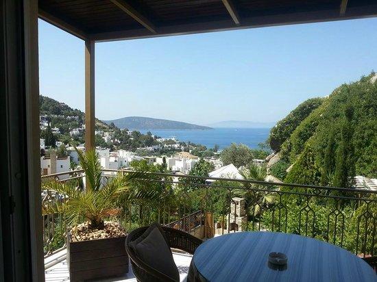 Aegean Gate Hotel : Stunning view