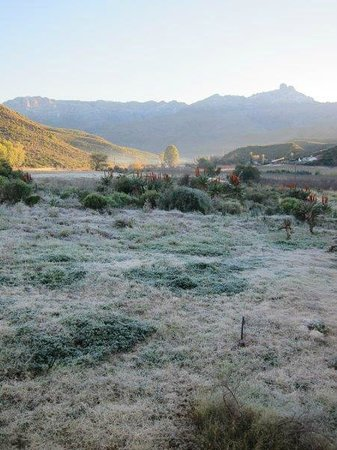 Koedoeskloof Country Lodge : Frosty view of Towerkop