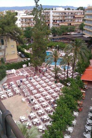 MedPlaya Hotel Calypso: вид из номера на бассейн