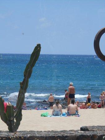 Surfwings Bar: View