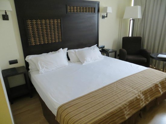 Sercotel Malaga : Room