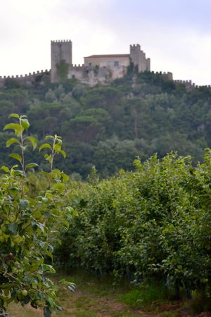 Casa D'Obidos : View of Obidos from property