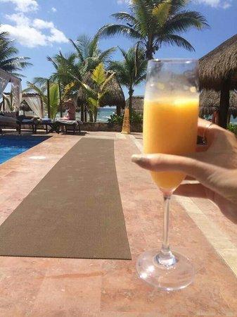 El Dorado Sensimar Riviera Maya: Cocktail @ lap pool