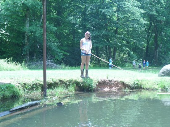 Andy's Trout Farm: I'm gonna catch a FISH