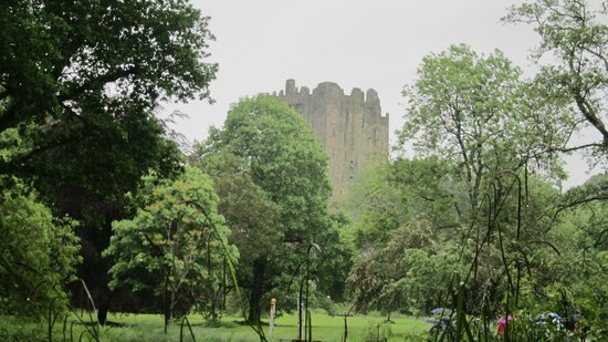 eCoach Shore Tours: Blarney Castle in the rain
