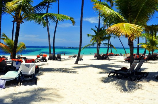 Barcelo Bavaro Beach - Adults Only: Beach....