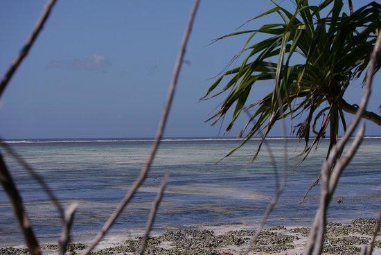 Pumzika Beach Resort : Blick aufs Meer