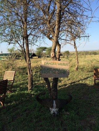 Serengeti Wild Camp: Wildcamp