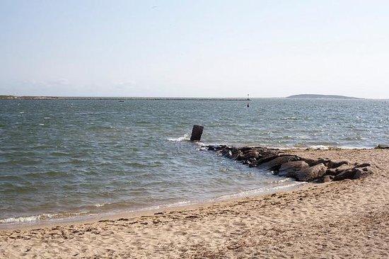 Mac's Shack : Beach Area