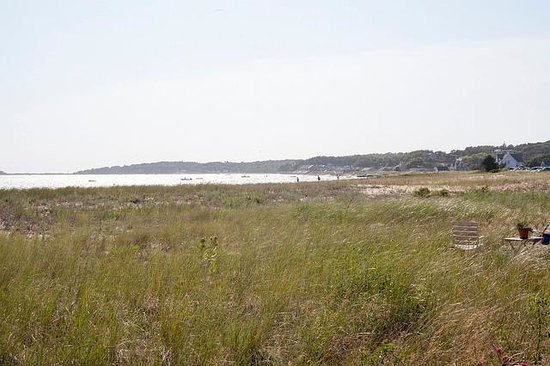 Mac's Shack: Beach Area