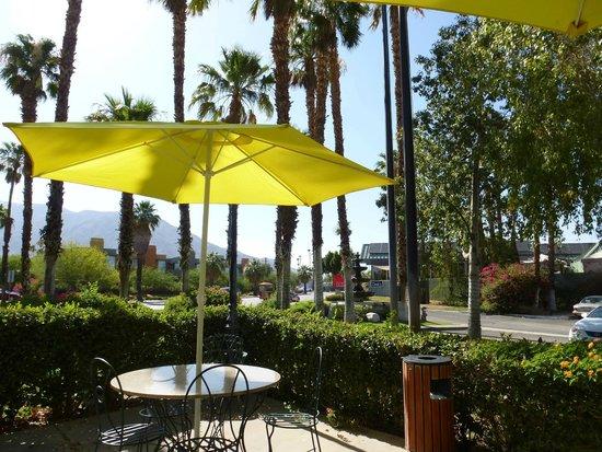 Ivy Palm Spa and Resort: Palmumstandene Terrasse vor Hotel
