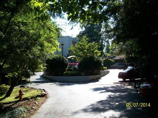Zoders Inn & Suites: Outdoor pool & parking area