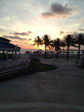 Melia Nassau Beach - All Inclusive: From poolside