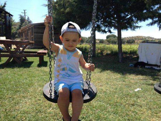 Ataol Tatil Ciftligi: çocuk parkı