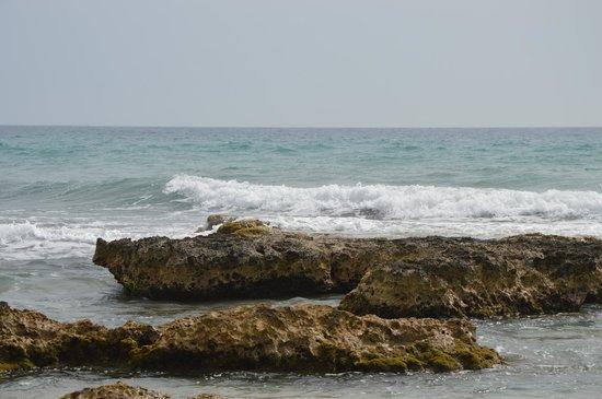 Bravo Daniela : Spiaggia