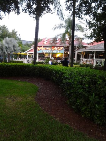 Homewood Suites Orlando-International Drive/Convention Center : bahama breeze