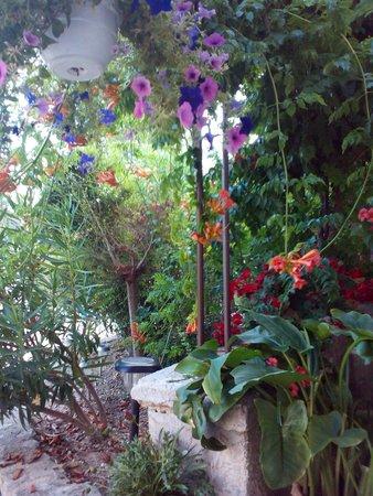 Maison D'Hotes Le Colombier: terrasse