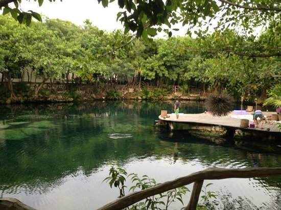Sandos Caracol Eco Resort: Cenote near lobby