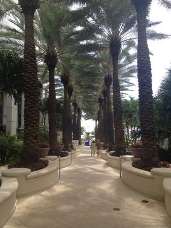 Loews Miami Beach Hotel: Doorkijk naar zwembad en zee.