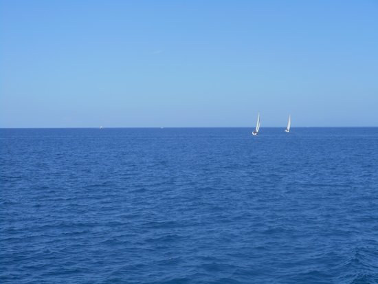 Líneas Blue Bird: View from on board. Such tranquility.