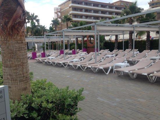 Hotel Riu Nautilus : One of the sunbathing spots
