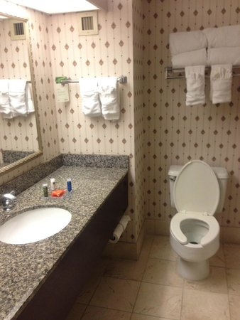 Radisson Hotel Nashville Airport: Bathroom
