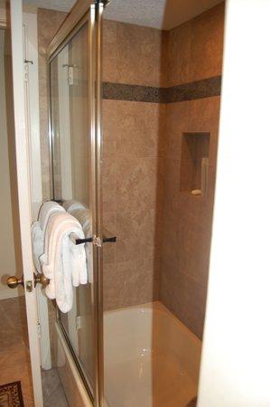 Edgewater Beach Condominium : Shower