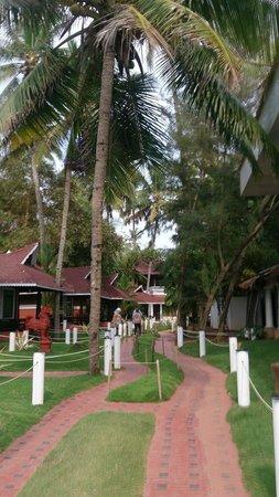 Clafouti Beach Resort : Отдельно стоящие домики
