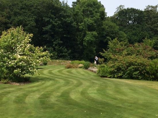 Gidleigh Park Hotel: putting green