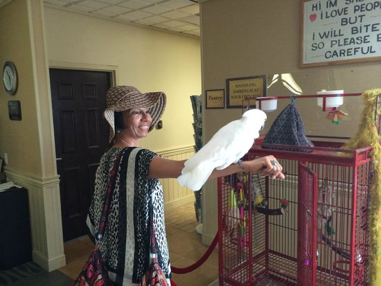 Ramada Plaza Nags Head Oceanfront: My wife greeted by the hotel bird, Sabrina, in the lobby
