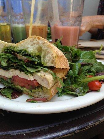 Urth Caffe: Cilantro Chicken Pesto Sandwich