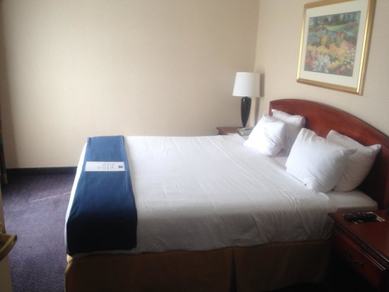 Holiday Inn Express Reading: King Bed- King Suite