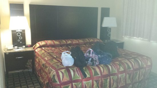 Heartland Inn - Coralville : King size bed