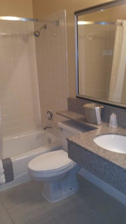 Heartland Inn - Coralville : bathroom