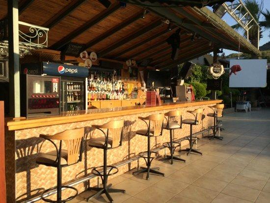 Club Dorado Hotel: bar