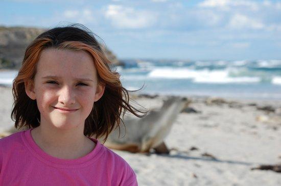 Seal Bay Conservation Park: Seal Bay, Kangaroo Island